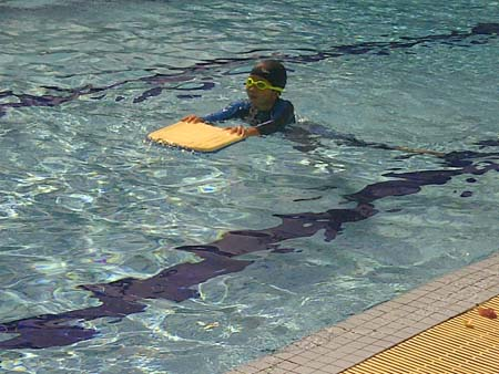 Swimming at school a mother 39 s monologue for Little fishes swim school