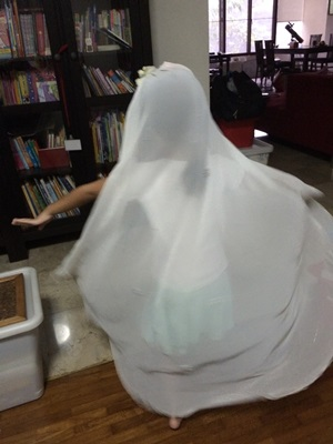 Bride's Veil 2